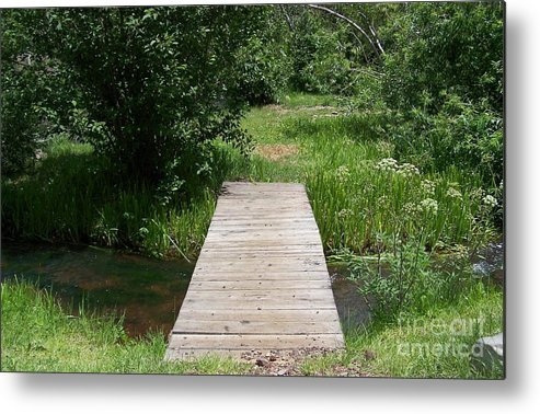 River Metal Print featuring the photograph Walking Bridge Over River by Pamela Walrath