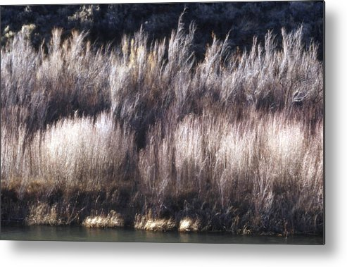 Landscape Metal Print featuring the photograph River Sage by Lynard Stroud