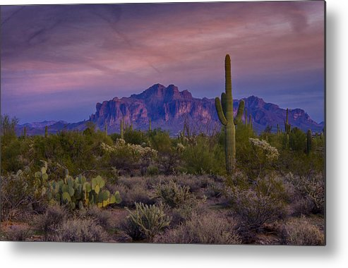 Sunset Metal Print featuring the photograph A Beautiful Desert Evening by Saija Lehtonen