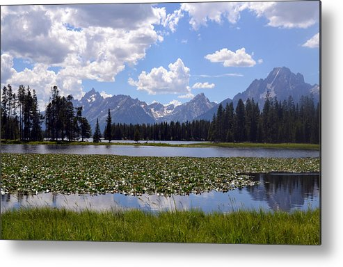 Mountains Metal Print featuring the photograph Yellowstone by Joseph Madison