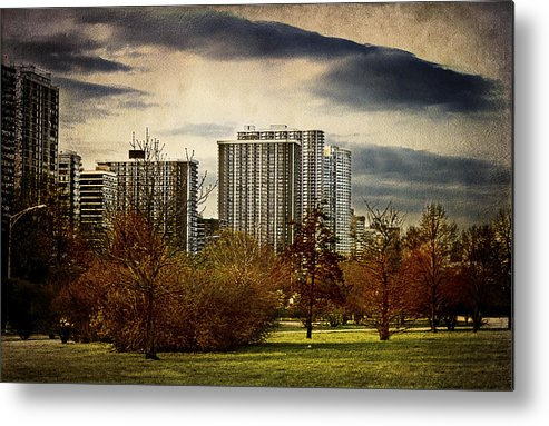 Trees Metal Print featuring the photograph Chicago Neighborhood by Milena Ilieva
