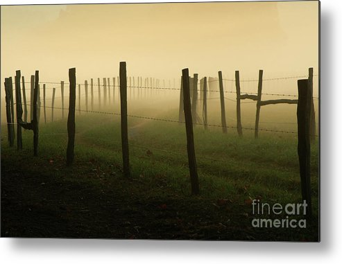 Fence Metal Print featuring the photograph Fading Into The Fog by Douglas Stucky