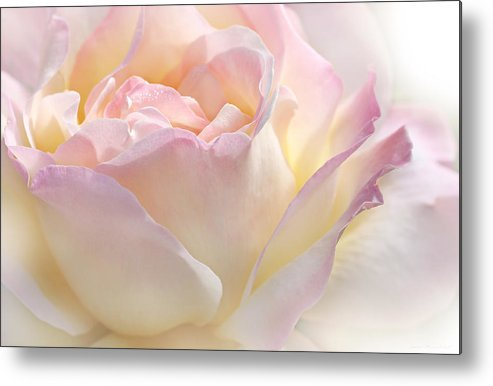Rose Metal Print featuring the photograph Heaven's Pink Rose Flower by Jennie Marie Schell