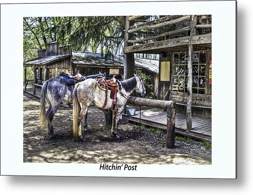 Horses Metal Print featuring the photograph Hitchin' Post by Terry Spencer