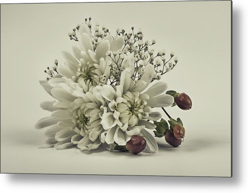 Holiday Metal Print featuring the photograph Holiday Boquet by Will D'angelo