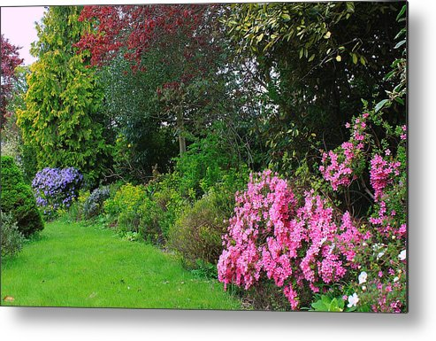 Fine Art Photograph Metal Print featuring the photograph In The Garden by Vickie Adams