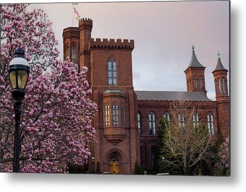 Andrew Pacheco Metal Print featuring the photograph Magnolias Near The Castle by Andrew Pacheco