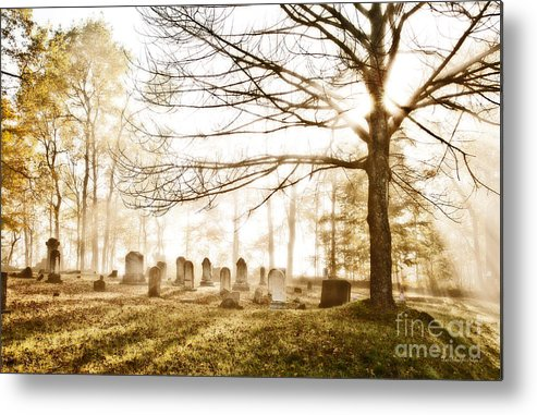 Early Morning Metal Print featuring the photograph Morning Has Broken by Lori Sulger