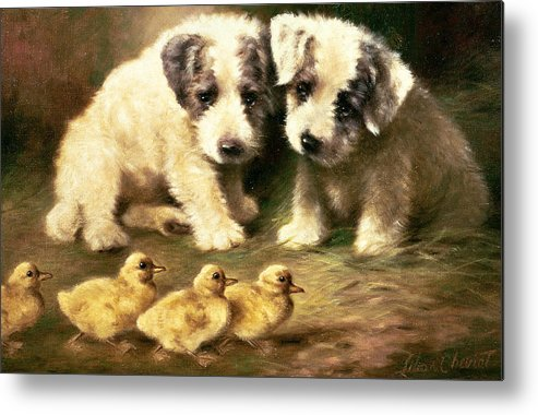 Dog Metal Print featuring the painting Sealyham Puppies And Ducklings by Lilian Cheviot