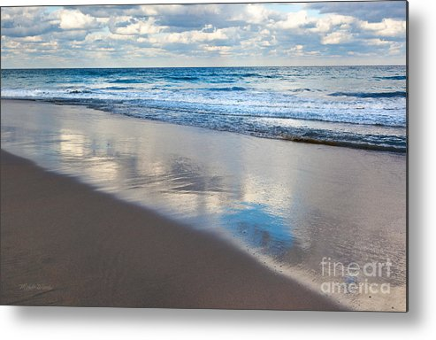 Self Reflection Metal Print featuring the photograph Self Reflection by Michelle Wiarda-Constantine