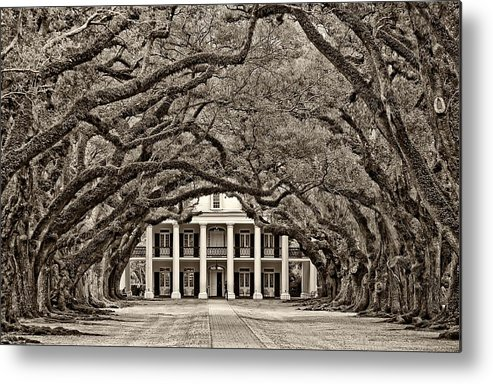 Oak Alley Plantation Metal Print featuring the photograph The Old South Sepia by Steve Harrington