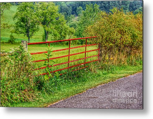 Red Gate Metal Print featuring the photograph The Red Gate by Kerri Farley