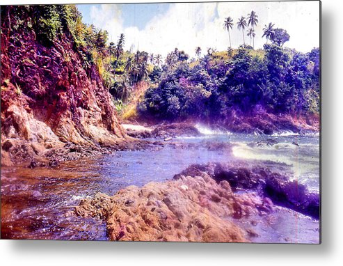 Nature Metal Print featuring the digital art Tobago by Serge Seymour