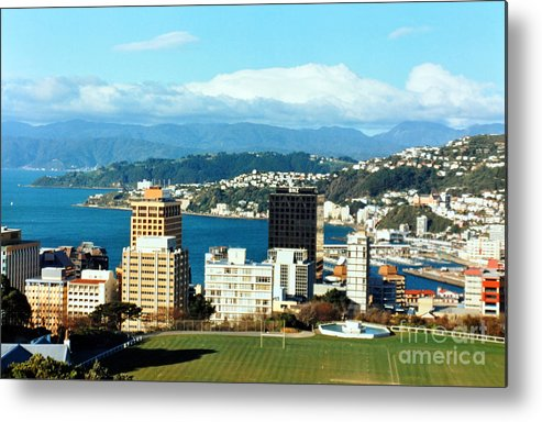 Wellington Metal Print featuring the photograph Wellington by Lydia Holly