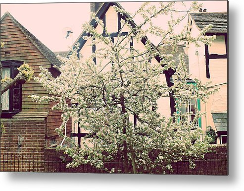 Fine Art Photograph Metal Print featuring the photograph White Blossom by Vickie Adams