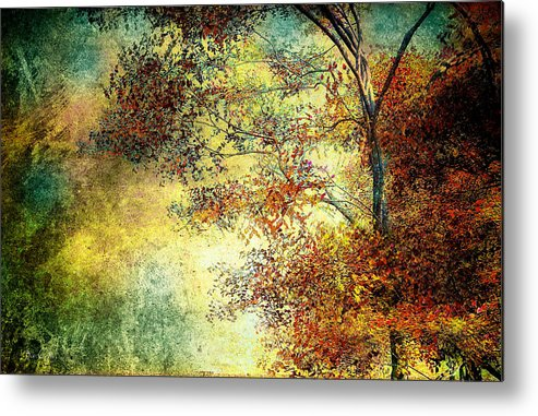 Landscape Metal Print featuring the photograph Wondering by Bob Orsillo