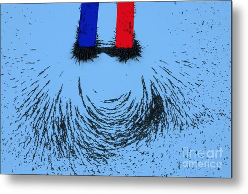 Magnet Metal Print featuring the photograph Magnetic Attraction by Photo Researchers, Inc.