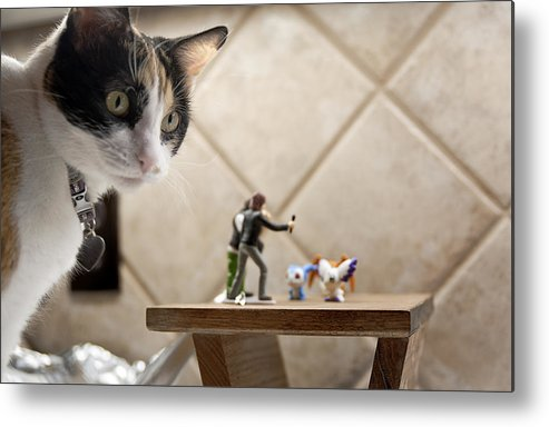American Shorthair Metal Print featuring the photograph Catzilla by Melany Sarafis