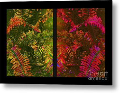 Christmas Metal Print featuring the photograph Christmas Fern Diptych by Judi Bagwell
