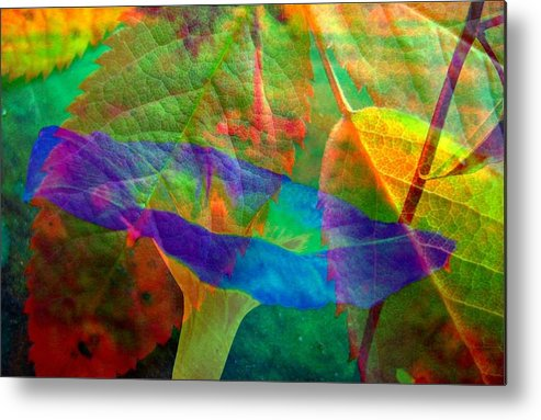 Abstract Metal Print featuring the photograph Colors Of Autumn by Shirley Sirois