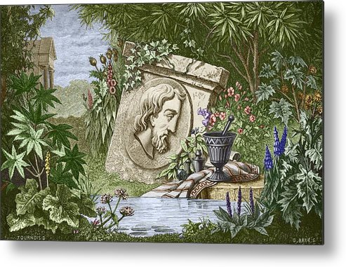 Dioscoridas Metal Print featuring the photograph Dioscorides, Ancient Greek Physician by Sheila Terry