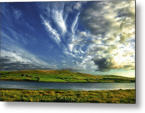 Nature Metal Print featuring the photograph Tingle by David Resnikoff