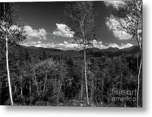 Nature Metal Print featuring the photograph Autumn In The White Mountains by Skip Willits