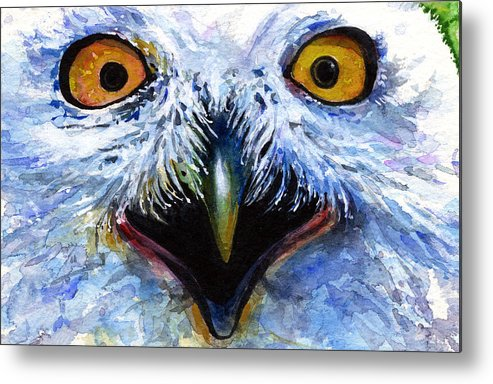 Eye Metal Print featuring the painting Eyes Of Owls No. 15 by John D Benson