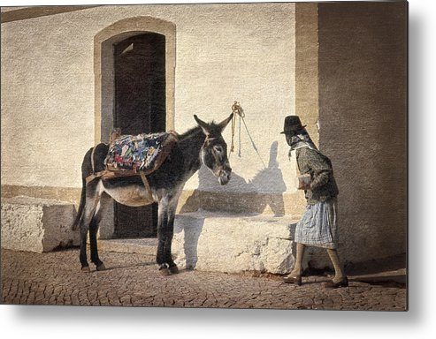 Algarve Metal Print featuring the photograph Algarve Donkey by Mikehoward Photography
