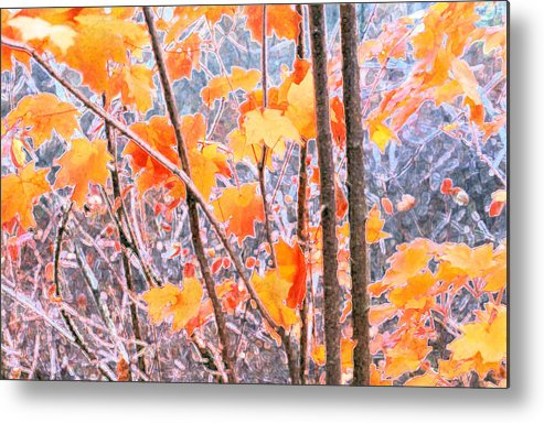 Autumn Metal Print featuring the digital art Autumn Leaves 2 Pdae by Lyle Crump