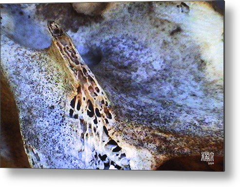 Microscopic Metal Print featuring the photograph Deer Virtabrate by Michele Caporaso