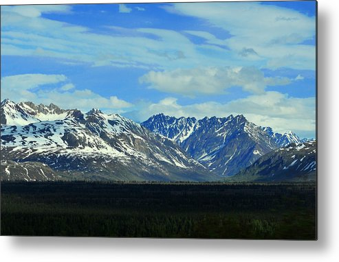 Denali Metal Print featuring the photograph Denali Valley by Keith Gondron