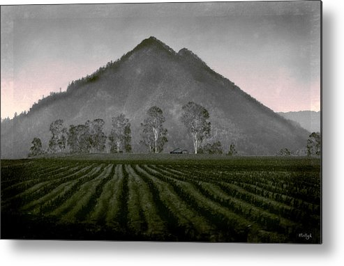 Landscapes Metal Print featuring the photograph Down From The Mountain by Holly Kempe