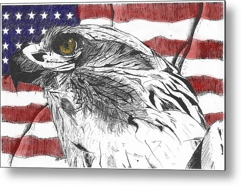 Patriotic Metal Print featuring the drawing Eagle by Nathaniel Hoffman