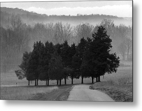 Evergreen Metal Print featuring the photograph Evergreen Mist by Paul Trunk