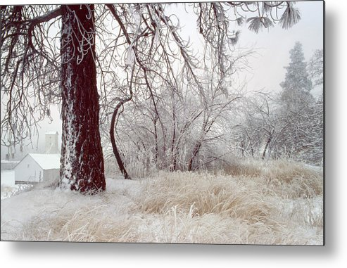 Palouse Metal Print featuring the photograph Frozen Morning In Palouse by Jerry McCollum