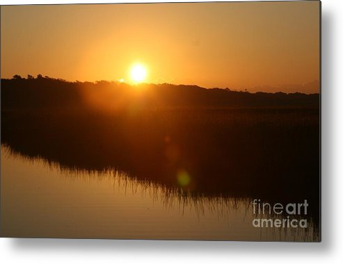 Glow Metal Print featuring the photograph Gold Morning by Nadine Rippelmeyer