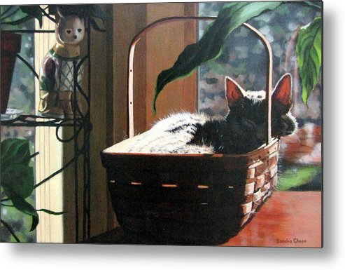 Cat Metal Print featuring the painting Her Basket by Sandra Chase