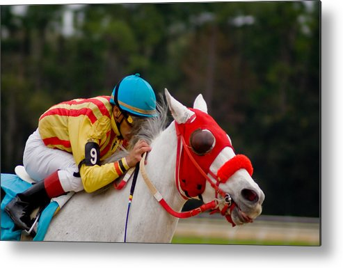 Horse Racing Metal Print featuring the photograph Horse Racing by Patrick Flynn