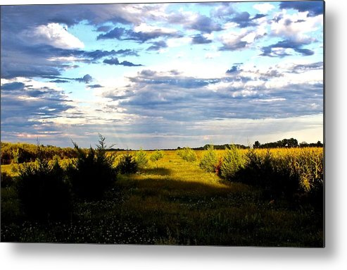 Metal Print featuring the photograph Pastel Sunset by Joni Fischenich