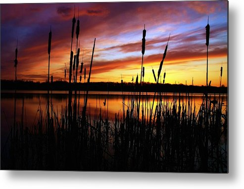Landscape Metal Print featuring the photograph Principles by Mitch Cat