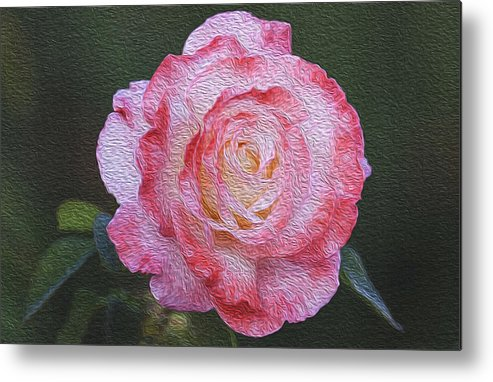 Flower Metal Print featuring the painting Rose by Jessica Nguyen