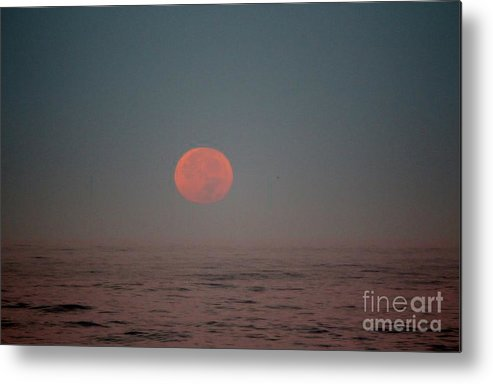 King Tide Metal Print featuring the photograph The King Tide And The Super Moon Collide by Marta Robin Gaughen