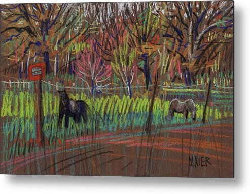 Ponies Metal Print featuring the drawing Two Ponies by Donald Maier