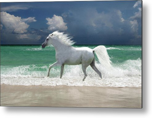 Animal Themes Metal Print featuring the digital art Horse Running Through Surf by Gerard Fritz