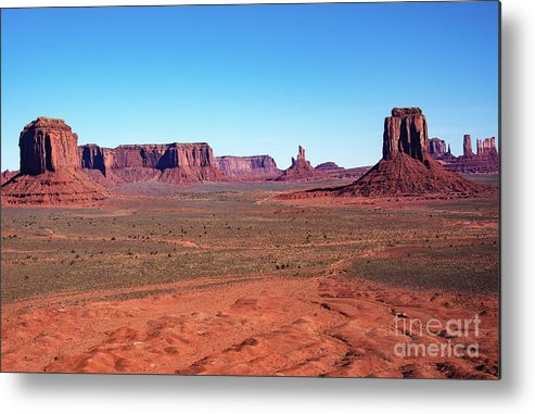 Nature At Work Metal Print featuring the photograph Nature At Work by Mae Wertz