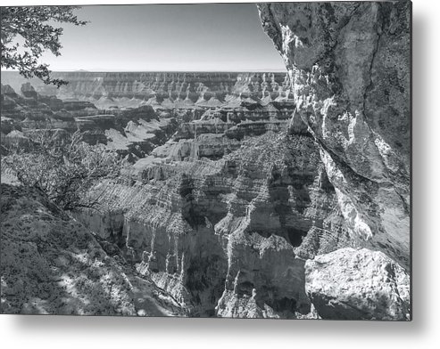 Grand Canyon Metal Print featuring the photograph Bright Angel Creek by Jim Baker