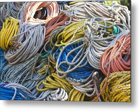 Lobster Metal Print featuring the photograph Colorful Lines by Jean Macaluso