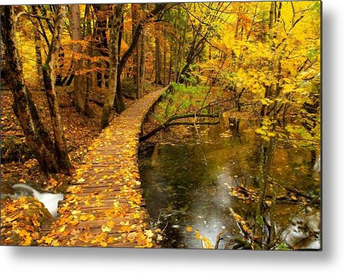 Autumn Metal Print featuring the photograph One's Destination Is Never A Place But Rather A New Way Of Looking At Things by Lori Strock