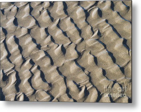 Nature Metal Print featuring the photograph Ripple Pattern On Mudflat At Low Tide by John Shaw